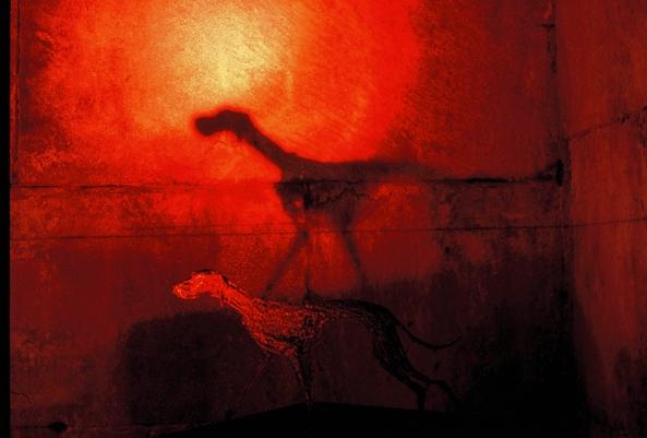izlozba-podrumi-08.jpg